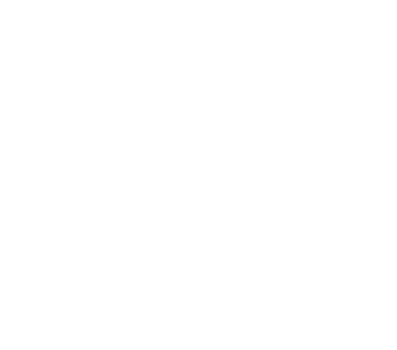 project-swiss-payment-monitor-cover-text